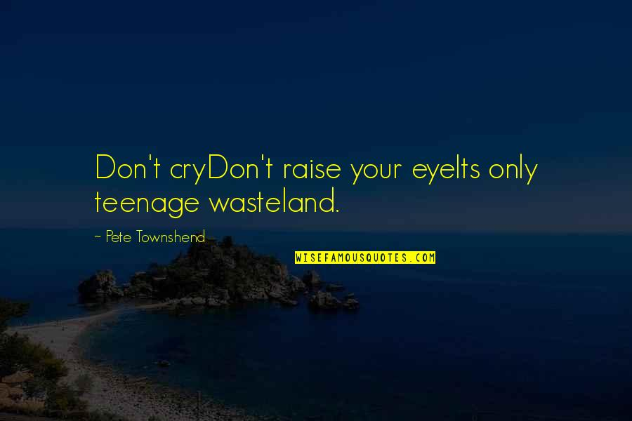 Don Cry Quotes By Pete Townshend: Don't cryDon't raise your eyeIts only teenage wasteland.