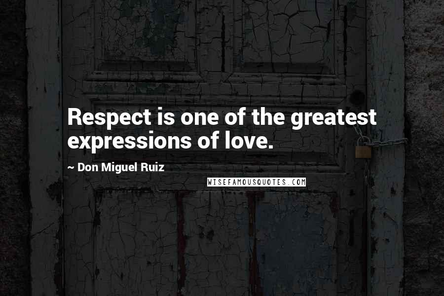 Don Miguel Ruiz quotes: Respect is one of the greatest expressions of love.