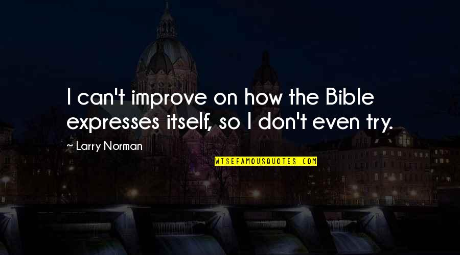 Don Norman Quotes By Larry Norman: I can't improve on how the Bible expresses