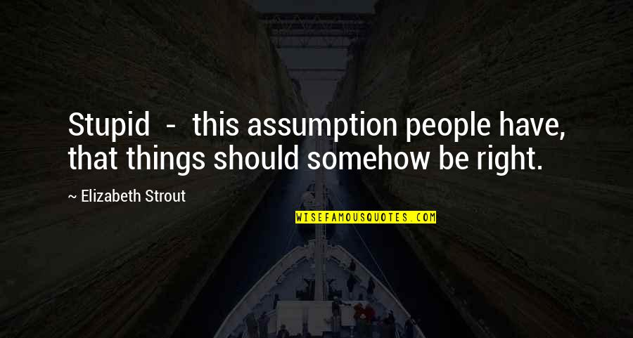 Don Soderquist Quotes By Elizabeth Strout: Stupid - this assumption people have, that things