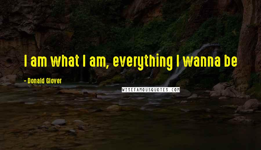 Donald Glover quotes: I am what I am, everything I wanna be