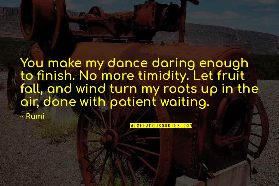 Done With Waiting Quotes By Rumi: You make my dance daring enough to finish.