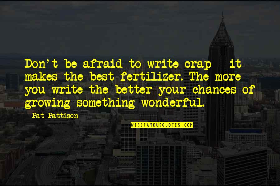 Don't Be Afraid To Quotes By Pat Pattison: Don't be afraid to write crap - it