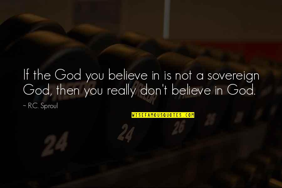 Don't Believe In God Quotes By R.C. Sproul: If the God you believe in is not