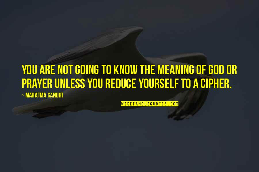 Don't Count What You Give Quotes By Mahatma Gandhi: You are not going to know the meaning