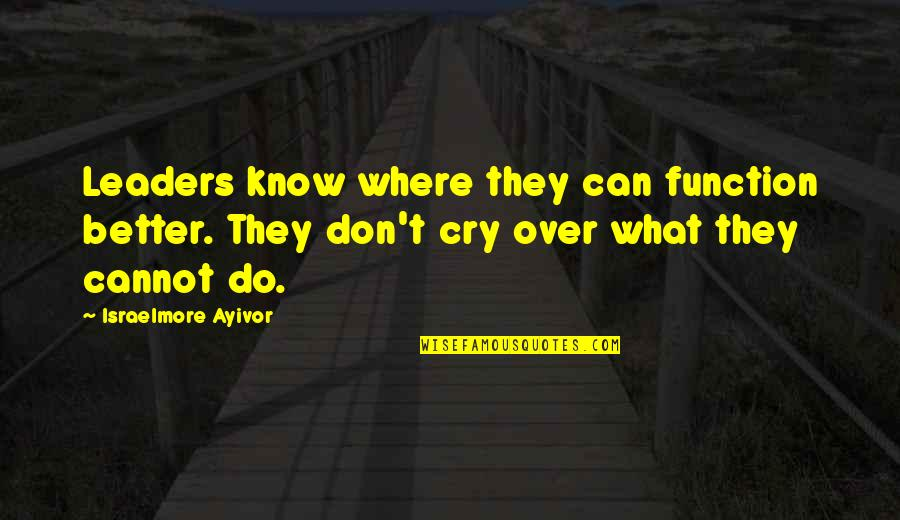 Don't Cry Over Quotes By Israelmore Ayivor: Leaders know where they can function better. They