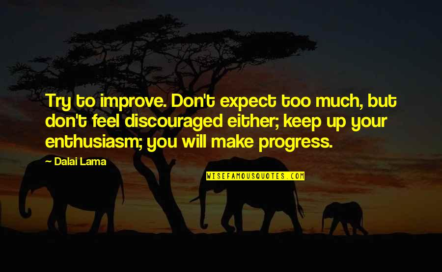 Don't Expect Too Much Quotes By Dalai Lama: Try to improve. Don't expect too much, but