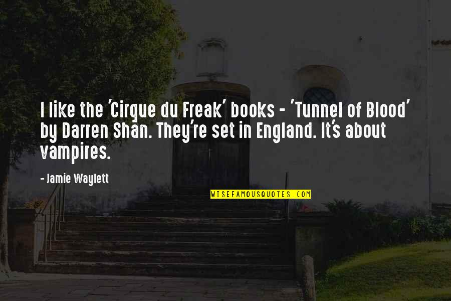 Don't Get Taken Advantage Of Quotes By Jamie Waylett: I like the 'Cirque du Freak' books -