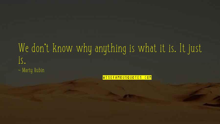 Don't Just Tell Me What I Want To Hear Quotes By Marty Rubin: We don't know why anything is what it