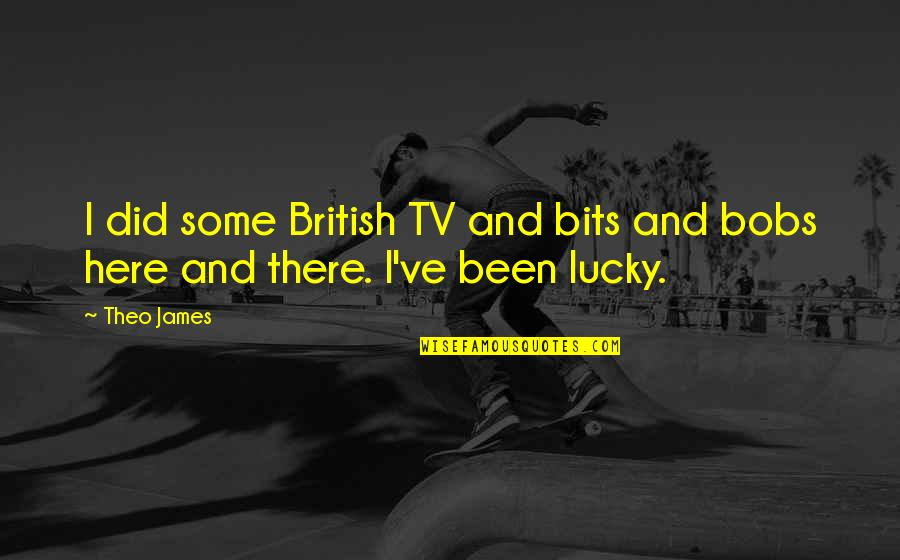 Don't Just Tell Me What I Want To Hear Quotes By Theo James: I did some British TV and bits and