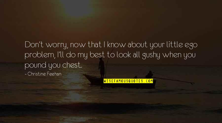 Don't Look Now Quotes By Christine Feehan: Don't worry, now that I know about your