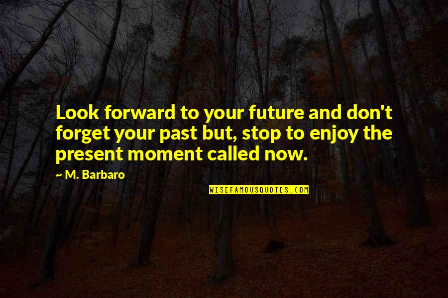 Don't Look Now Quotes By M. Barbaro: Look forward to your future and don't forget