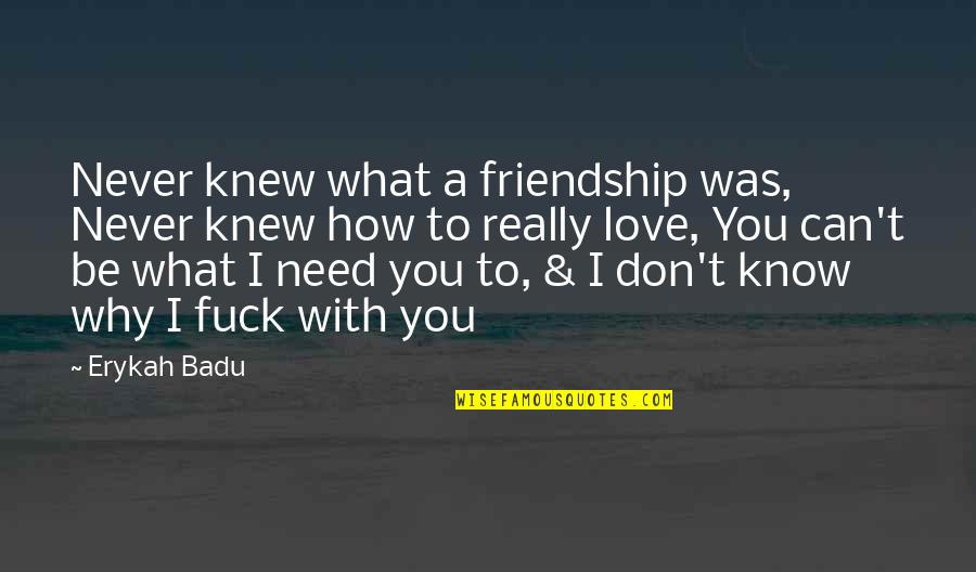 Don't Need Love Quotes By Erykah Badu: Never knew what a friendship was, Never knew