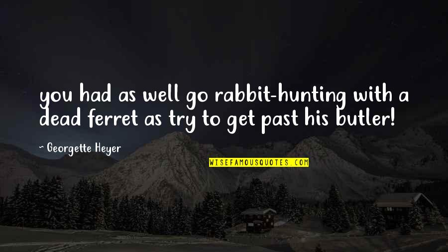 Don't Push My Button Quotes By Georgette Heyer: you had as well go rabbit-hunting with a