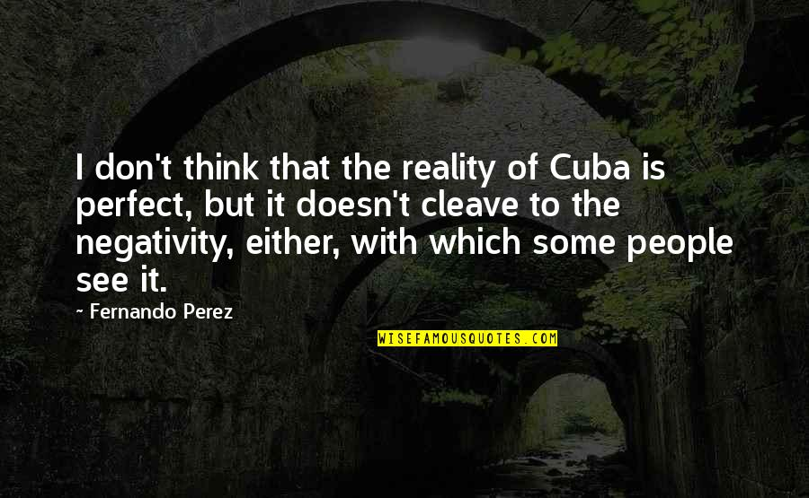 Don't Think You Are Perfect Quotes By Fernando Perez: I don't think that the reality of Cuba