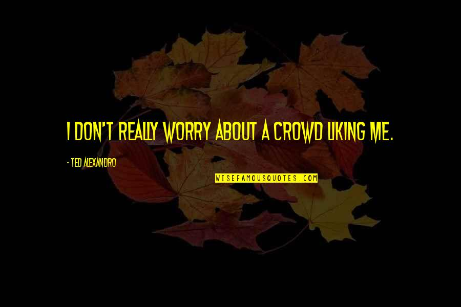 Don't Worry About Me Quotes By Ted Alexandro: I don't really worry about a crowd liking