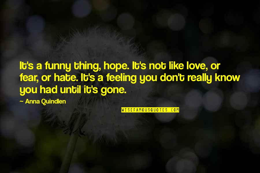 Don't You Hate It Quotes By Anna Quindlen: It's a funny thing, hope. It's not like