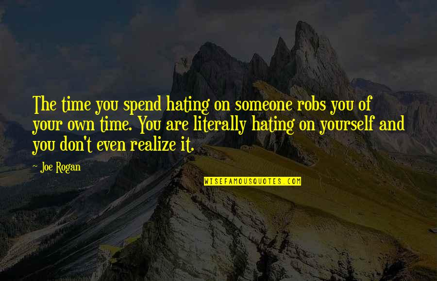Don't You Hate It Quotes By Joe Rogan: The time you spend hating on someone robs