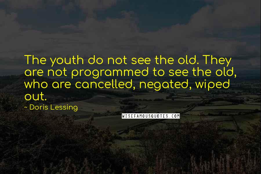 Doris Lessing quotes: The youth do not see the old. They are not programmed to see the old, who are cancelled, negated, wiped out.