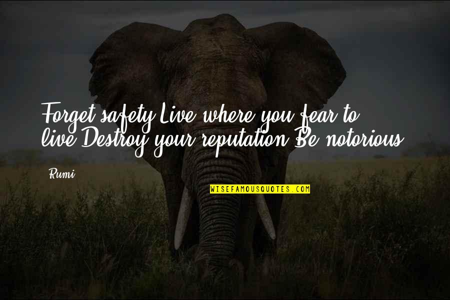 Dr Bilal Philips Islamic Quotes By Rumi: Forget safety.Live where you fear to live.Destroy your