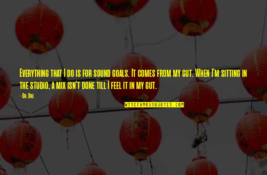 Dr Dre Quotes By Dr. Dre: Everything that I do is for sound goals.