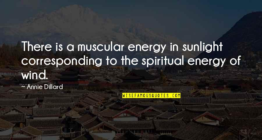 Dr Hew Len Quotes By Annie Dillard: There is a muscular energy in sunlight corresponding