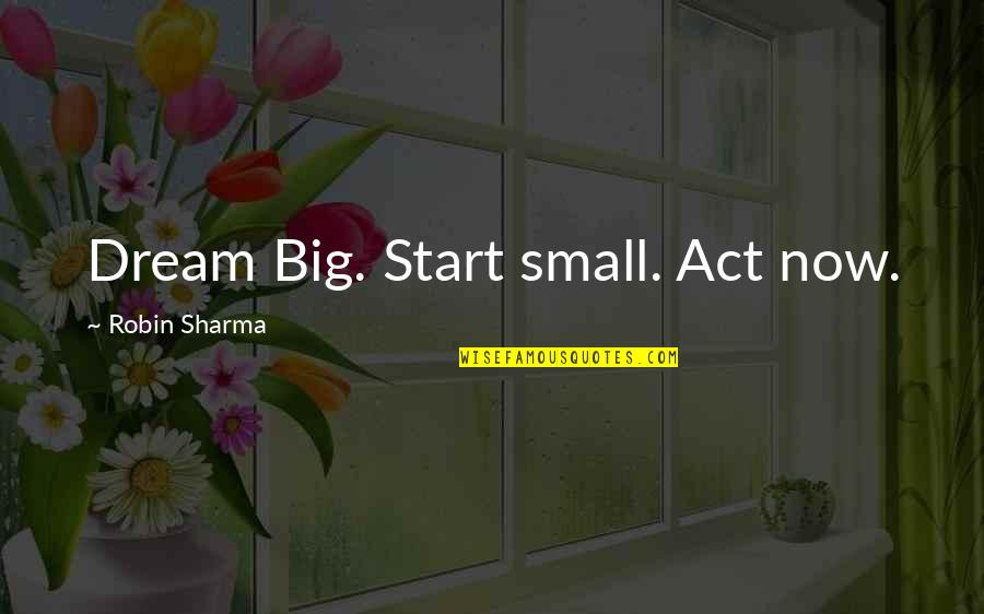 Dream Act Quotes By Robin Sharma: Dream Big. Start small. Act now.