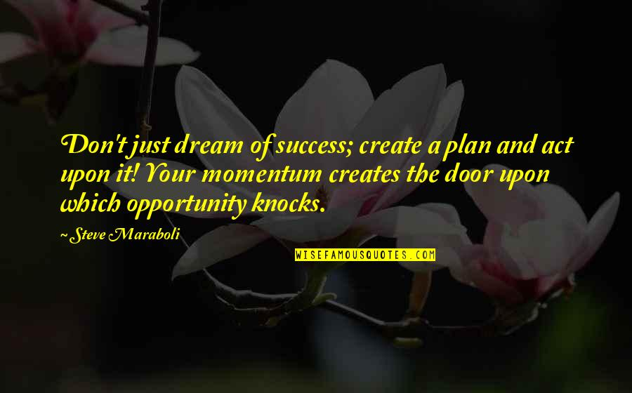 Dream Act Quotes By Steve Maraboli: Don't just dream of success; create a plan