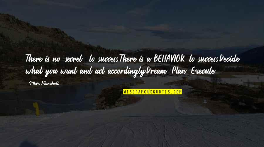 Dream Act Quotes By Steve Maraboli: There is no 'secret' to success.There is a