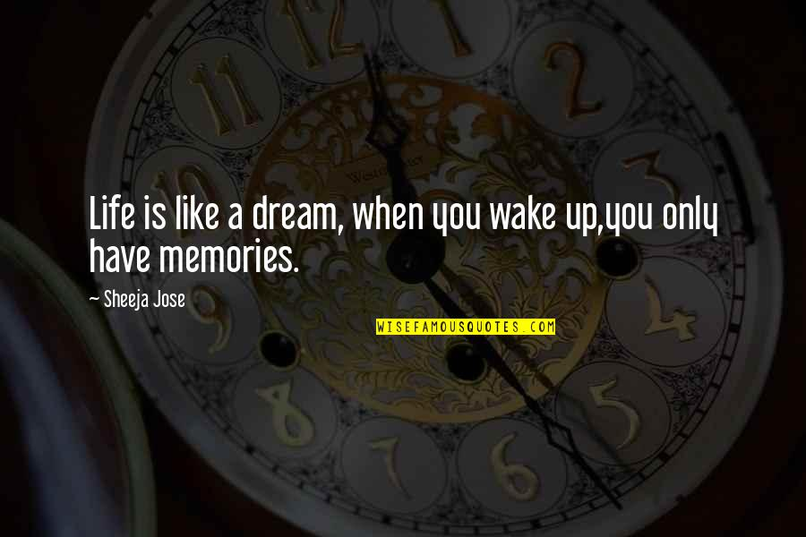 Dream All Day Quotes By Sheeja Jose: Life is like a dream, when you wake
