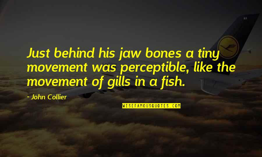 Dream Believe Succeed Quotes By John Collier: Just behind his jaw bones a tiny movement