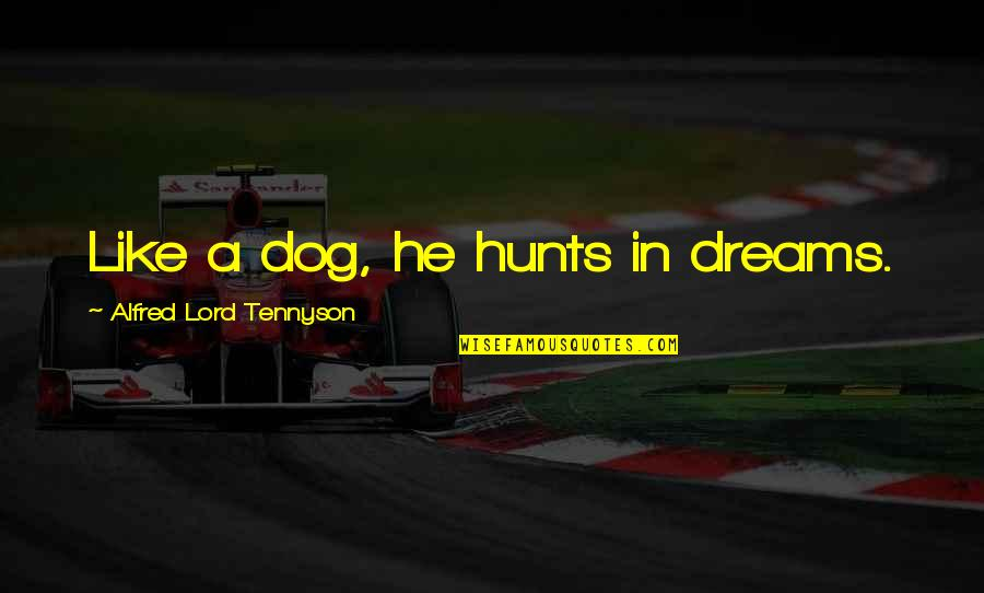 Dream Lord Quotes By Alfred Lord Tennyson: Like a dog, he hunts in dreams.