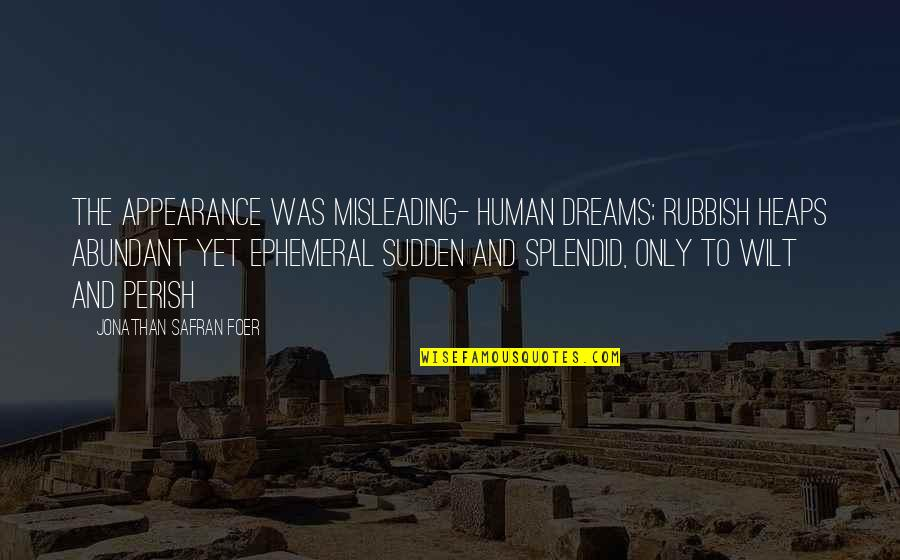 Dreams And Quotes By Jonathan Safran Foer: The appearance was misleading- human dreams; rubbish heaps
