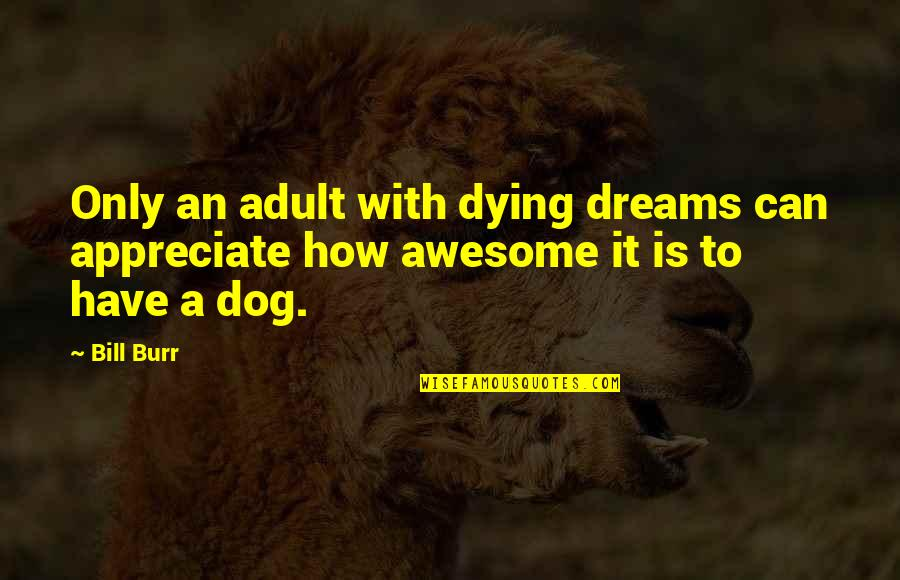 Dreams Dying Quotes By Bill Burr: Only an adult with dying dreams can appreciate