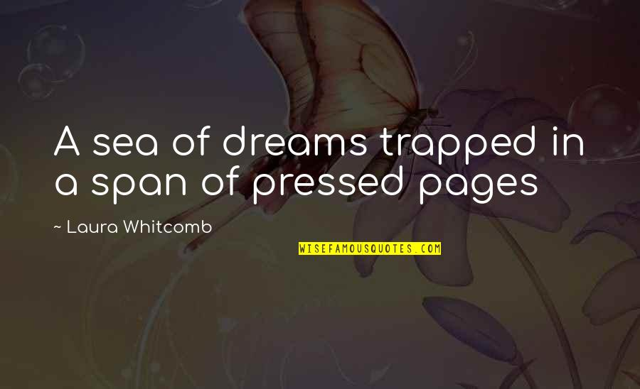 Dreams From Books Quotes By Laura Whitcomb: A sea of dreams trapped in a span