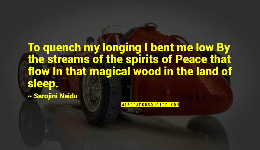 Dreams In Life Quotes By Sarojini Naidu: To quench my longing I bent me low