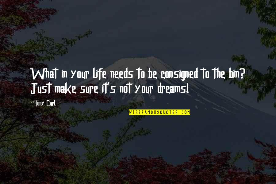Dreams In Life Quotes By Tony Curl: What in your life needs to be consigned