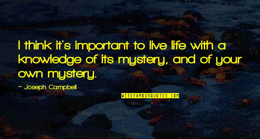 Dreams Lucid Dreaming Quotes By Joseph Campbell: I think it's important to live life with