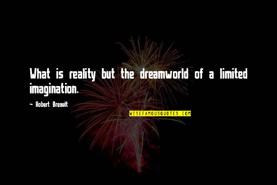 Dreamworld Quotes By Robert Breault: What is reality but the dreamworld of a