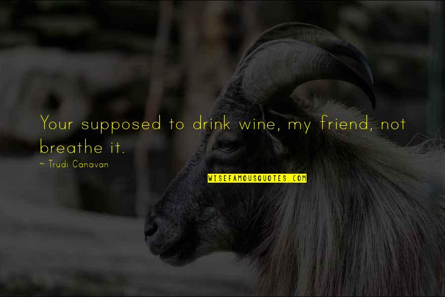 Drink Wine Quotes By Trudi Canavan: Your supposed to drink wine, my friend, not