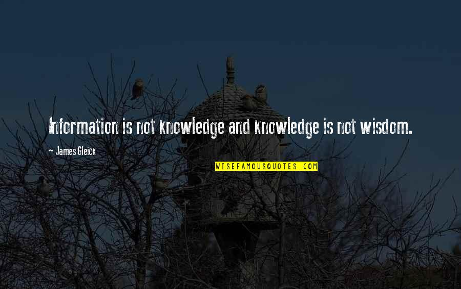 Drinking Abuse Quotes By James Gleick: Information is not knowledge and knowledge is not