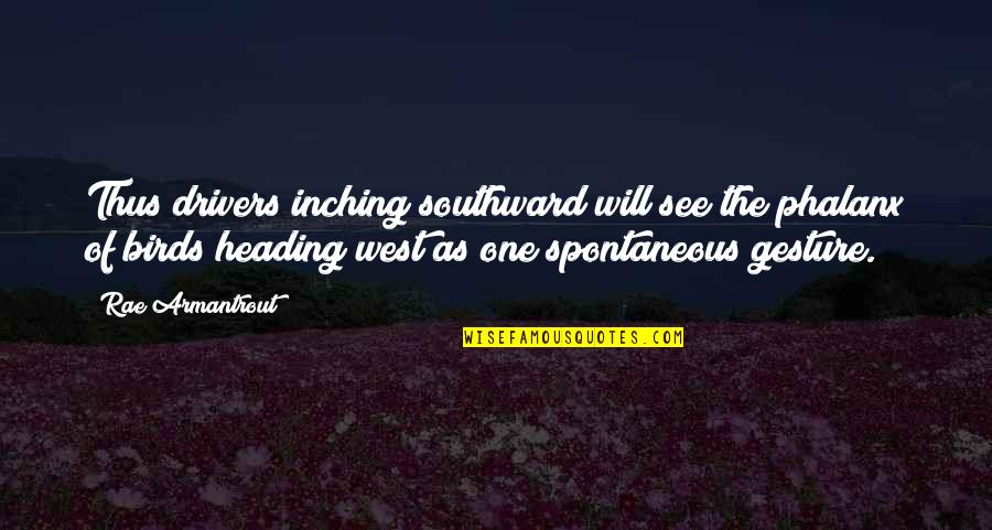 Drivers Quotes By Rae Armantrout: Thus drivers inching southward will see the phalanx