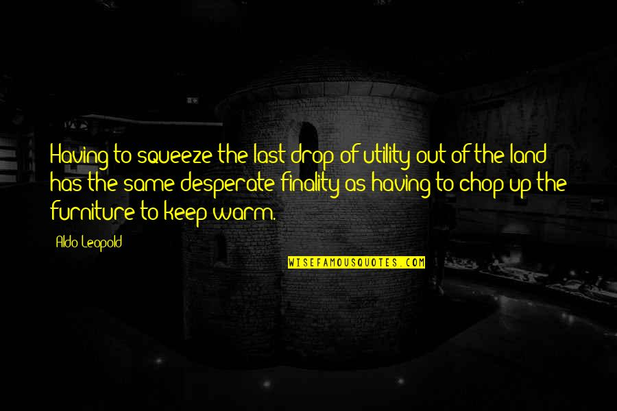 Drop Out Quotes By Aldo Leopold: Having to squeeze the last drop of utility
