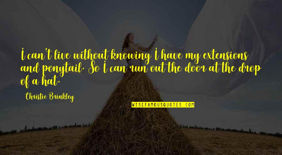 Drop Out Quotes By Christie Brinkley: I can't live without knowing I have my
