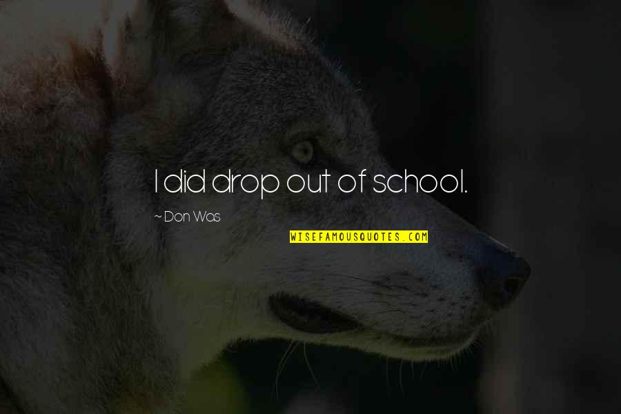 Drop Out Quotes By Don Was: I did drop out of school.