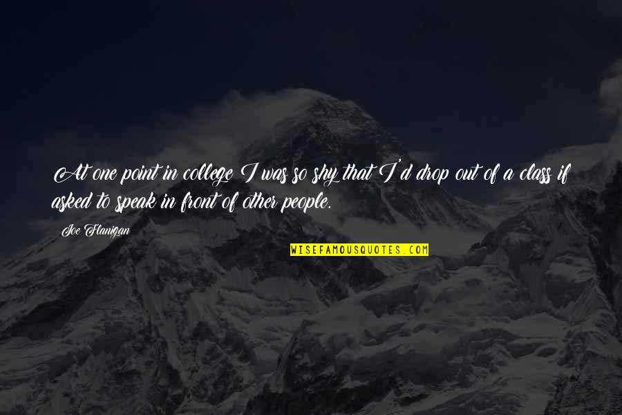 Drop Out Quotes By Joe Flanigan: At one point in college I was so