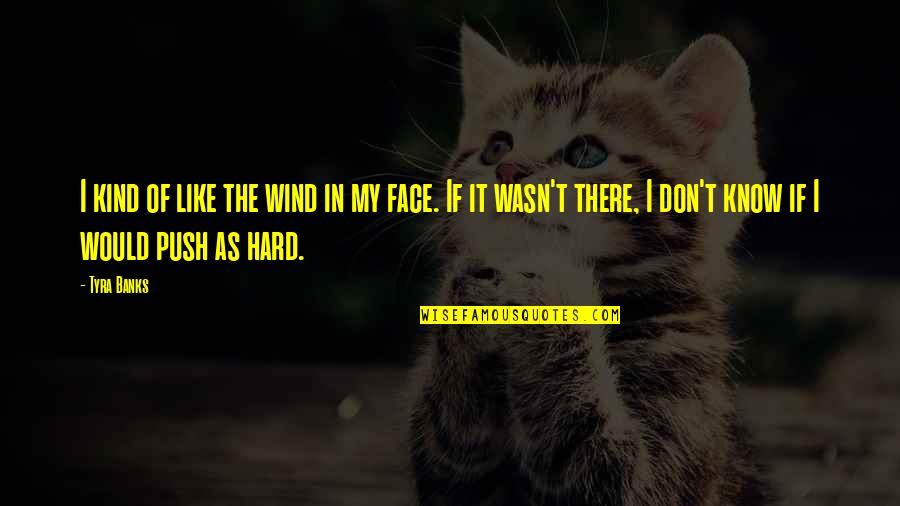 Drossiness Quotes By Tyra Banks: I kind of like the wind in my