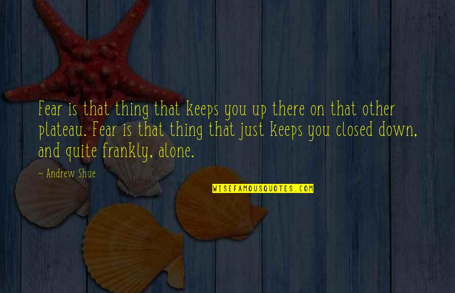 Drug Delivery Quotes By Andrew Shue: Fear is that thing that keeps you up