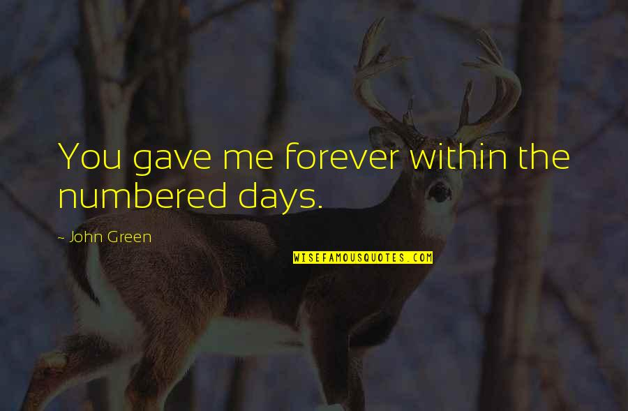 Drummle In Great Expectations Quotes By John Green: You gave me forever within the numbered days.