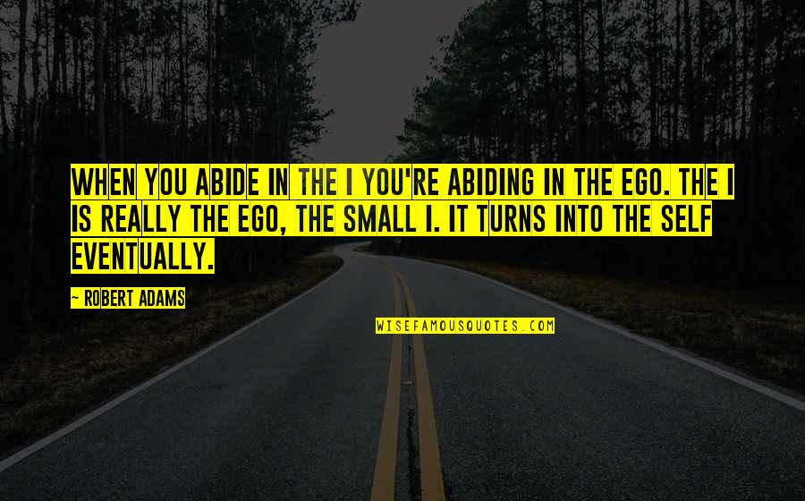 Dudeism Quotes By Robert Adams: When you abide in the I you're abiding